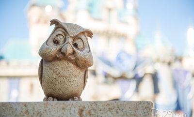 Disney Parks Photo Tips