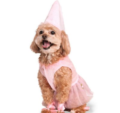 Puppy princess costume